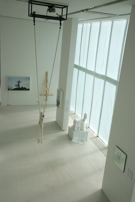 Emma Woffenden: Anima Animus, 2009. View of exhibition.