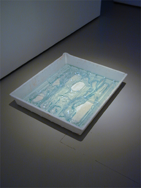 Emma Woffenden: Solo show, Barrett Marsden Gallery, 2001. Steamed Glass In A Plastic Tray